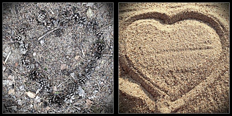 сердце из шишек и песка