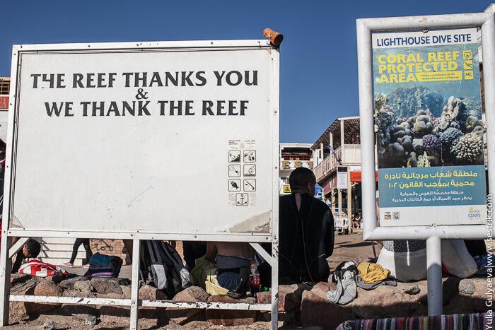 рифы в Дахаб
