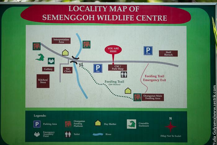 карта реабилитационного центра семенгун