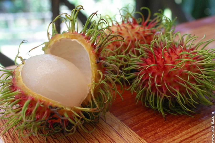 фрукт рамбутан