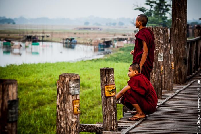 молодые монахи