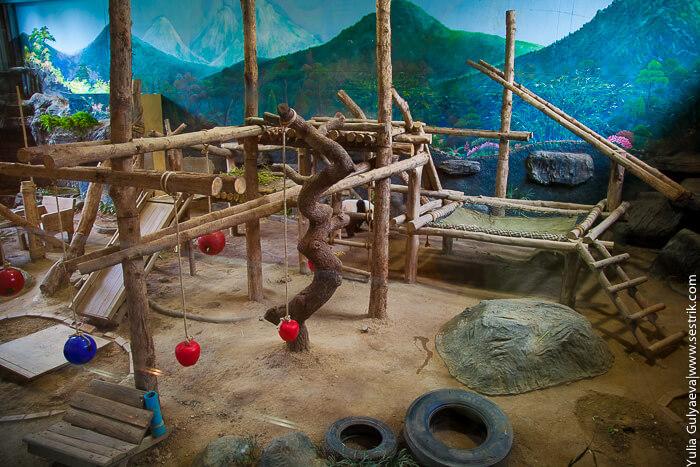 зоопарк в чианг май