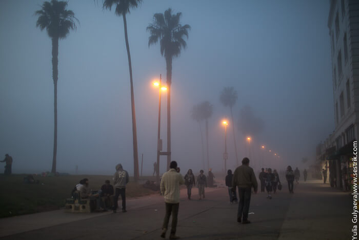 туман на побережье
