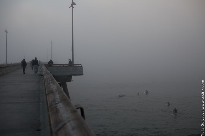 фото тумана над водой