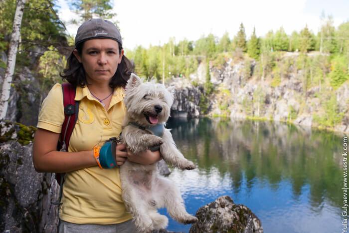 в карелию с собакой