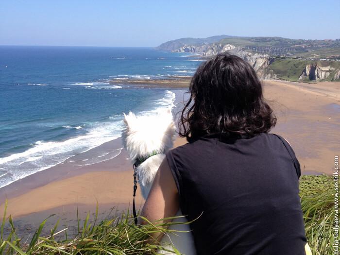 с собакой в страну басков