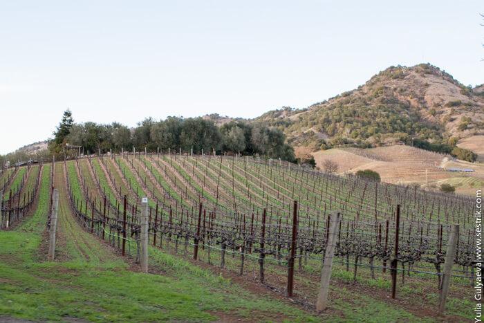 napa valley в калифорнии