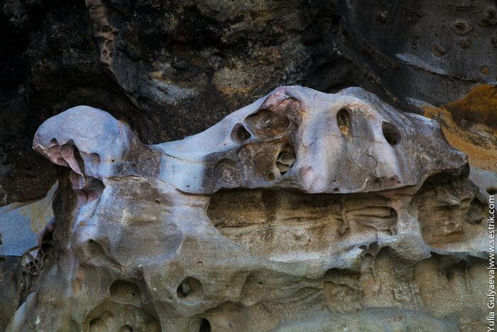 черепаха из камня