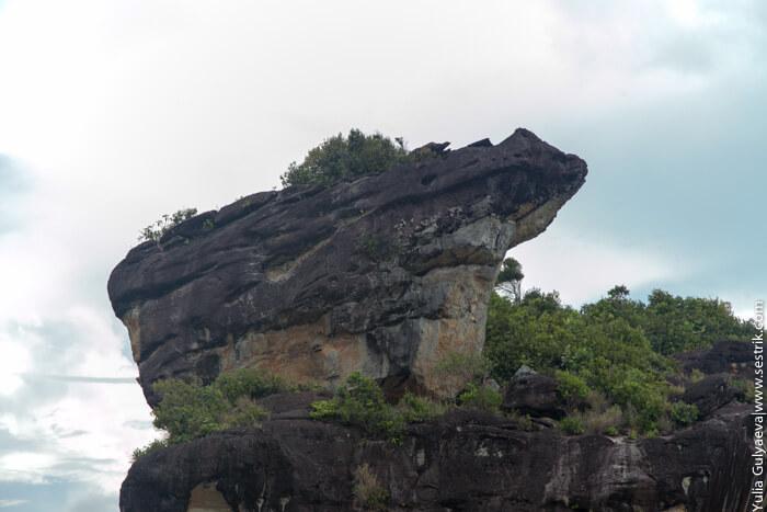 лягушка из камня