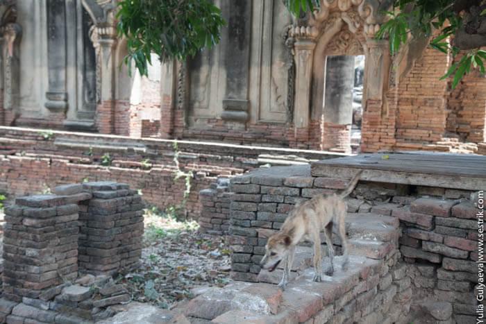 разрушенный храм в бирме