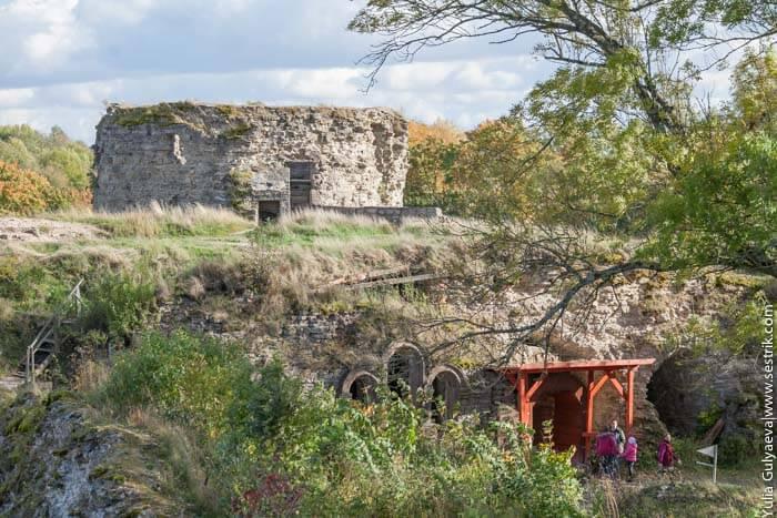 вид со стены крепости в копорье