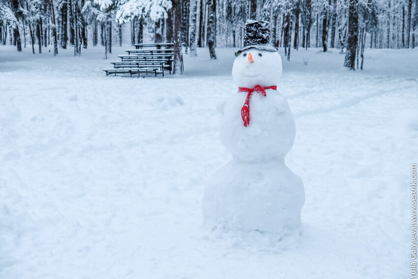 атрибут снеговика
