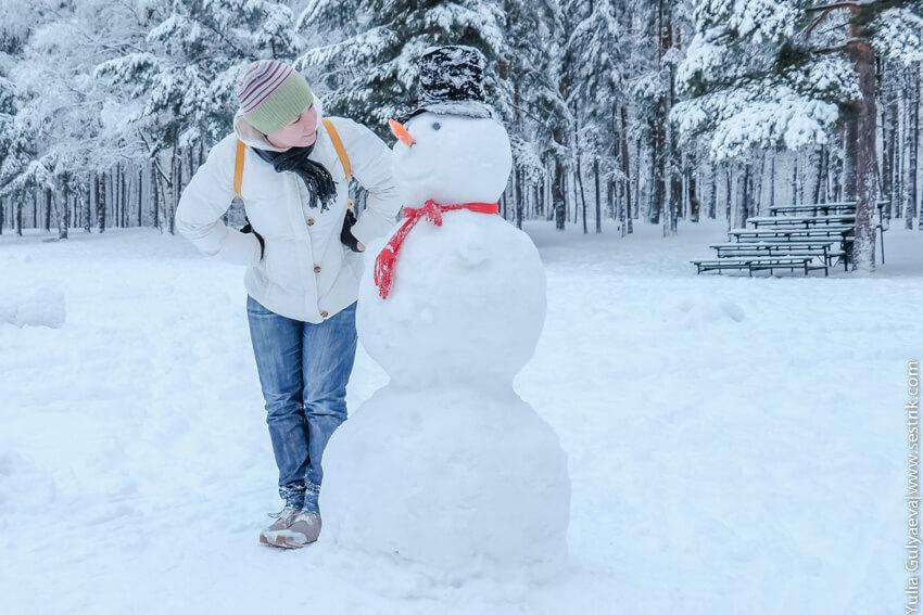 история снеговиков