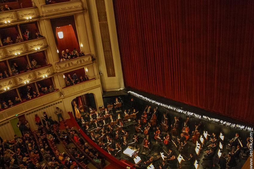 оркестр в опере в вене