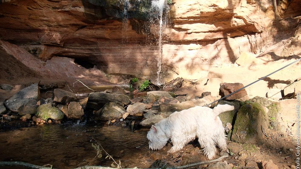 горчаковский водопад