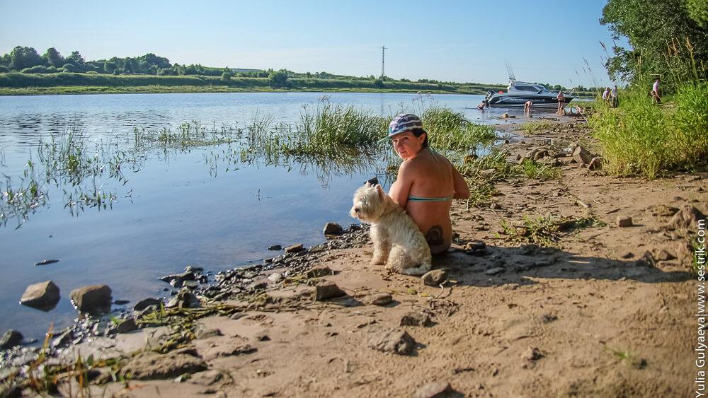 посидим на берегу реки с собакой