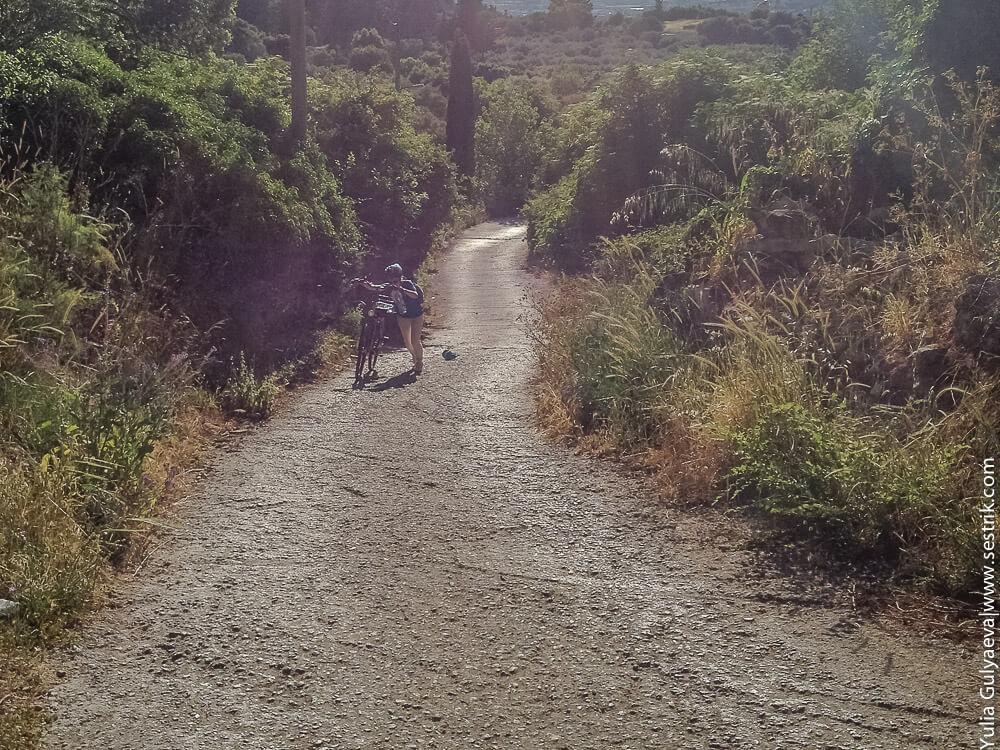 дорога в горы на косе