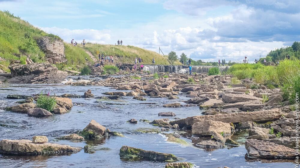 берега реки тосны