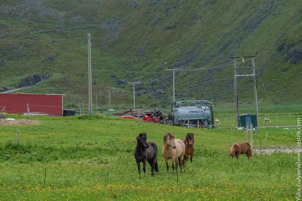 поселок унстад в норвегии