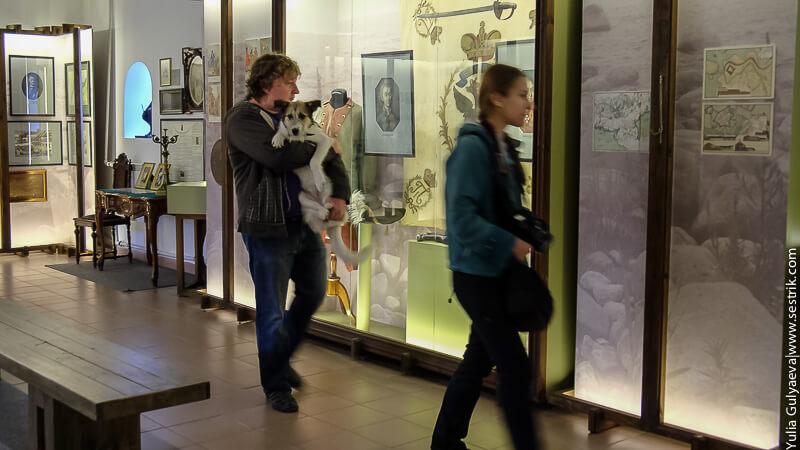 музей корела