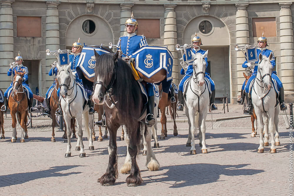 королевская гвардия швеции