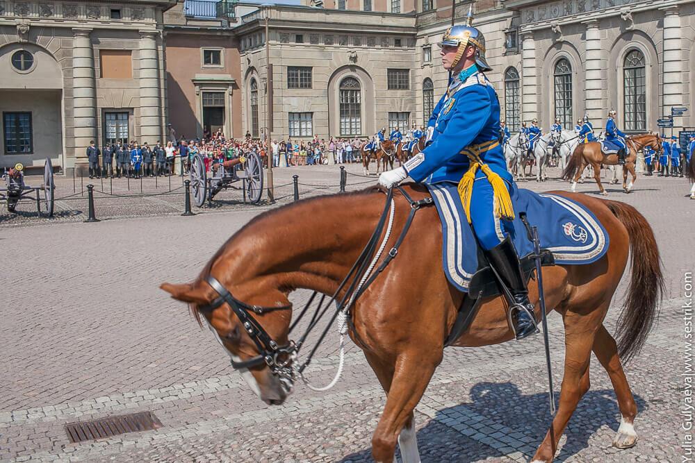 королевская кавалерия швеции