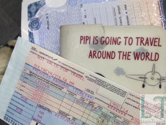 Билеты на самолет для животных санкт-петербург владивосток купить билет на самолет