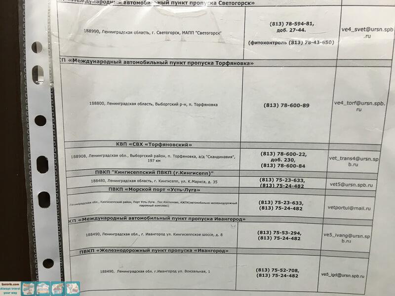 Справка для перевозки животных Алексеевская медицинская справка в гаи волгоград