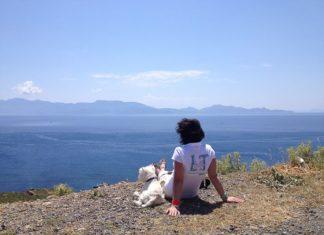 с собакой на море в грецию