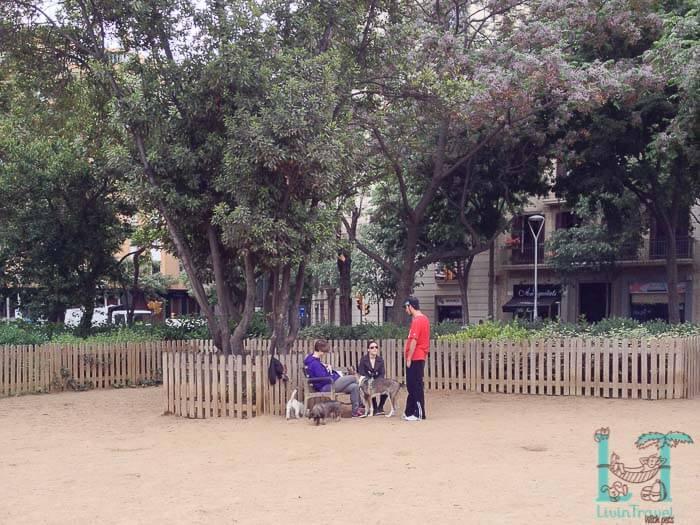 собачий парк в Барселоне