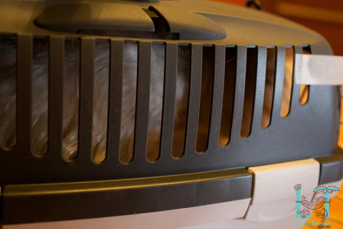 обзор пластиковой переноски гулливер