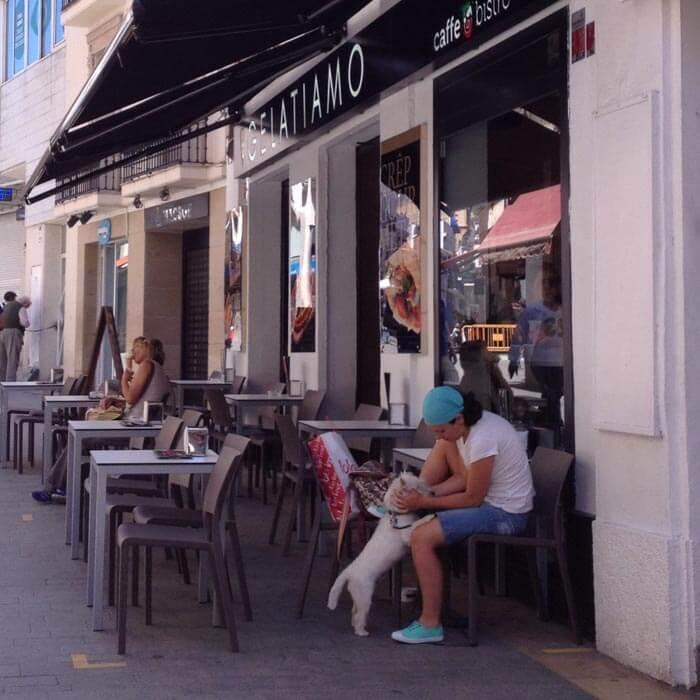 кафе в Испании куда можно с собакой