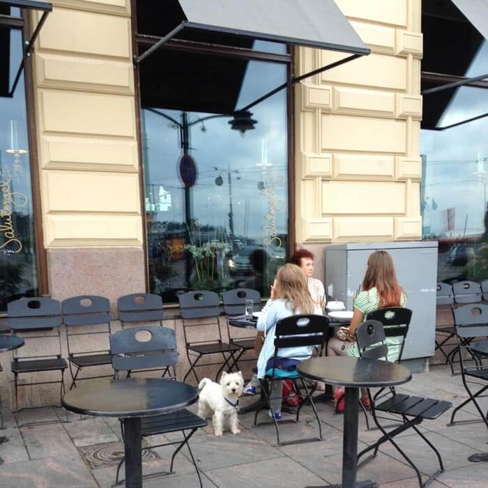 ресторан с финской ухой в хельсинки