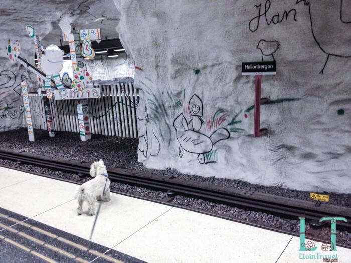 собака в метро Стокгольма