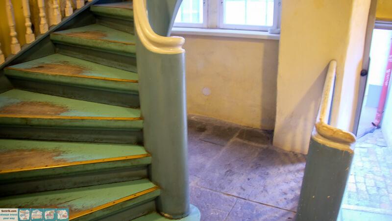 зеленая лестница ракушка
