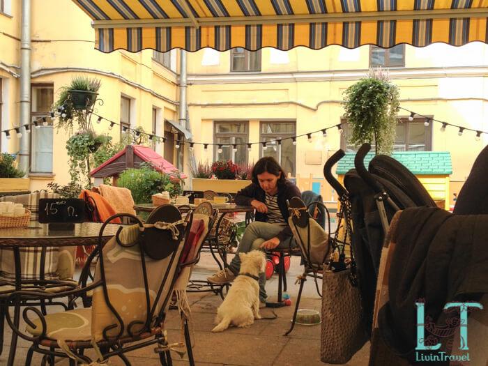 собака на террасе ресторана тепло
