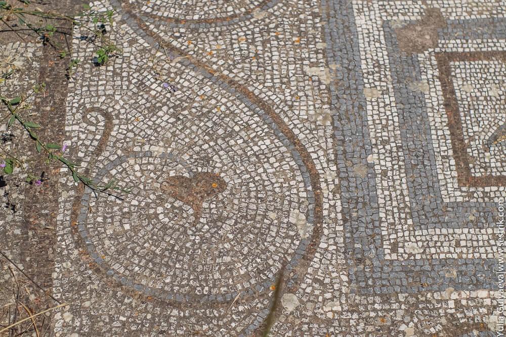мозайка на полу агора кос