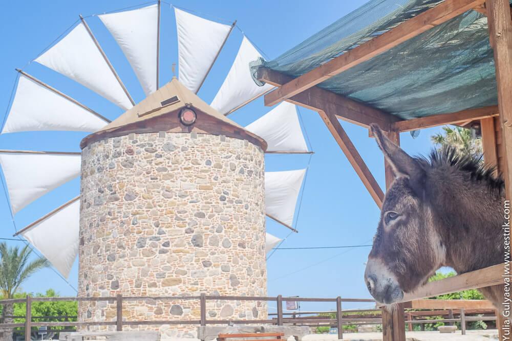 мельницы на острове кос
