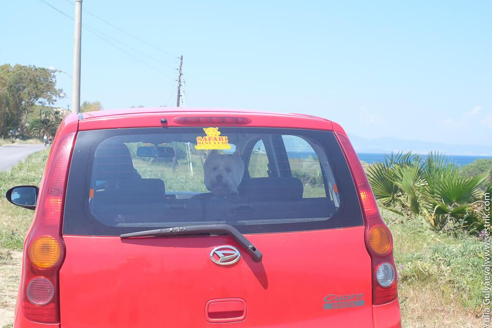 машина в аренду на острове кос