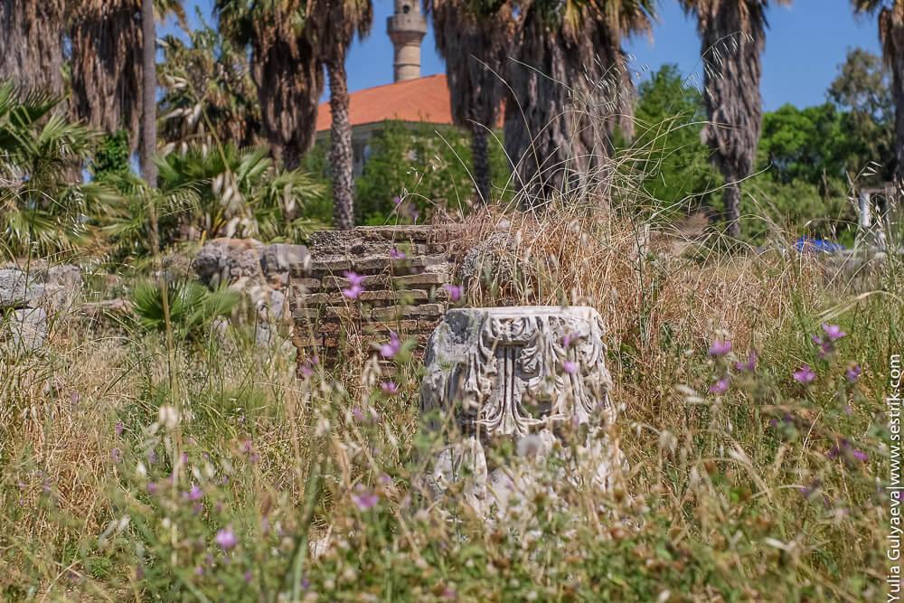 древнегреческая колонна в колосьях