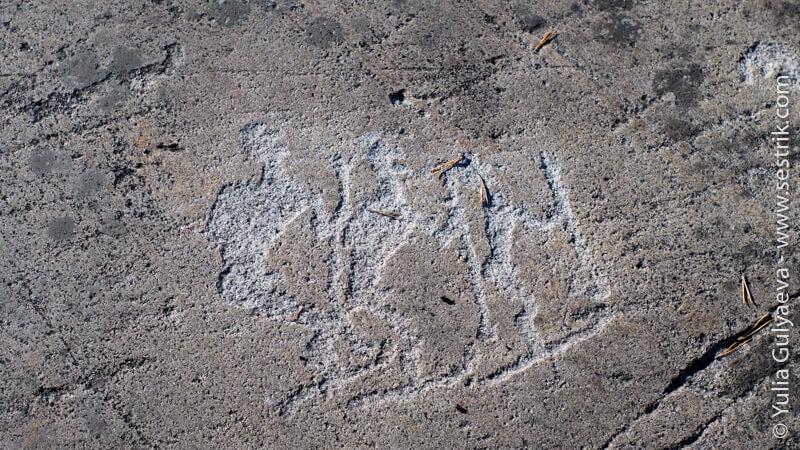 петроглифы охотники на лыжах