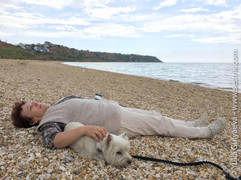 на пляжи крыма с собакой