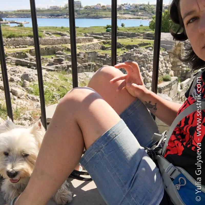 посещение херсонеса с собакой