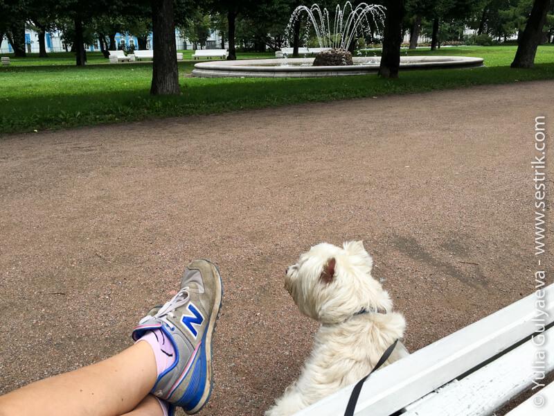 парк у смольного собора