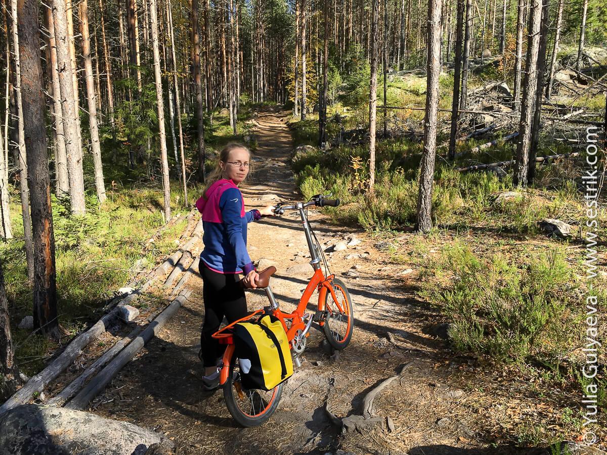 folding-bikes-307
