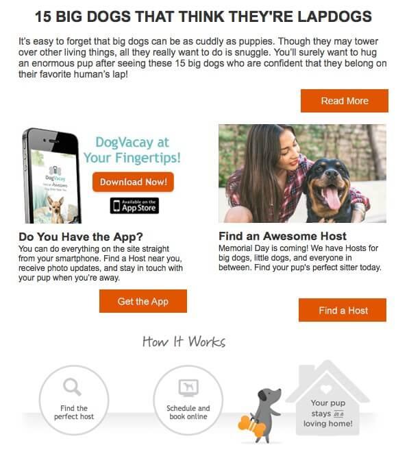 гостиница для собак в америке