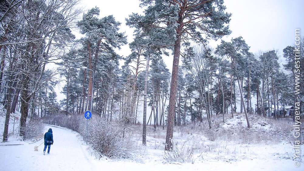 погулять в юрмале зимой