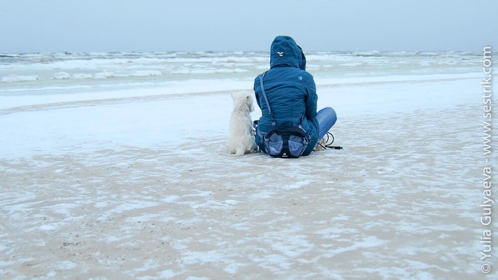 посидим поглядим на балтийское море