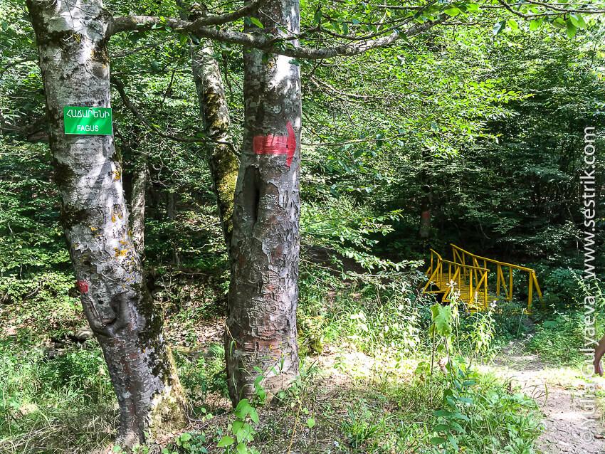 дорога до монастыря гошаванк