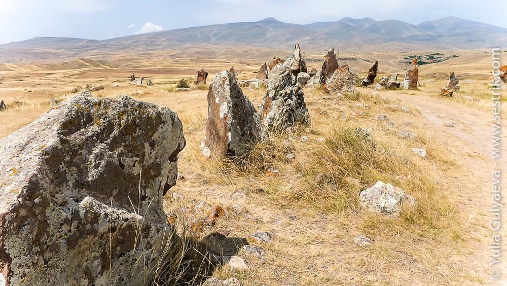 зорац карер в армении